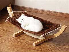 猫猫用品 要的抓紧了