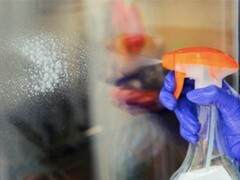 威海杀白蚂蚁公司 威海饭店驱白蚁 威海灭白蚁
