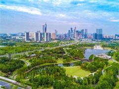 岳阳高档别墅庭院苗木 造型罗汉松造型红继木,免费景观设计