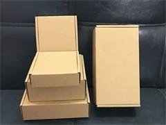深澤郵政泡沫箱保溫箱保鮮盒子大號種菜李子快遞專用冷凍保溫袋
