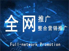 专业网站建设,网络推广,营销