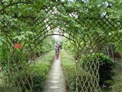 神農架姊妹園避暑民宿