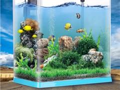 淡海水魚缸維護消毒清洗魚缸維修,造景魚缸