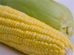 进口零食批发厂家进口食品批发进口商品货源批发