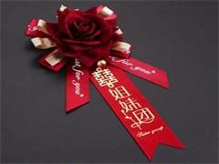 马鞍山专业庆典公司承接宴会布场 气球造型设计 婚礼布置