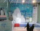 海狮鳄鱼表演企鹅海洋展羊驼萌宠展鹦鹉表演百鸟展马戏团杂技