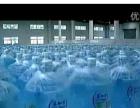----+-商丘送水桶装水娃哈哈景田百岁山益加力-+--