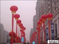 北京朝阳区开业庆典 婚礼策划 升空气球租赁 舞台背板 红地毯