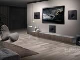淄博东旭智能影音专业设计安装--美国AR全景声家庭影院