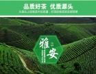 茶叶大量批发零售