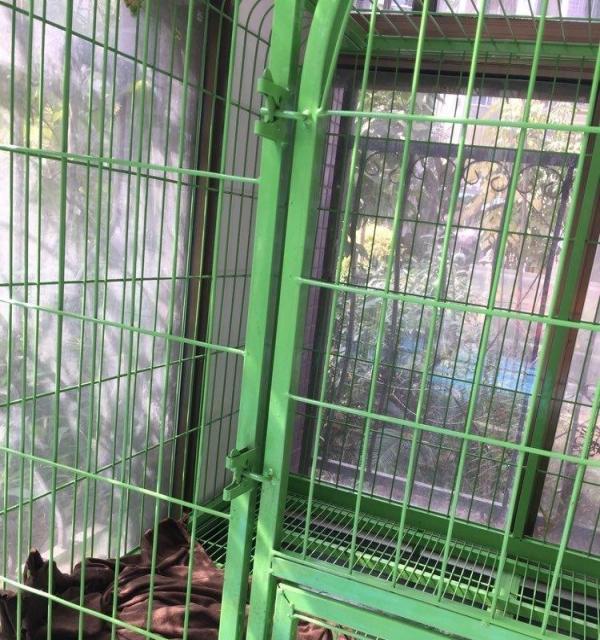 125 95 113大狗笼适用于拉拉金毛萨摩等