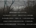 真韵皇茶 奶茶加盟品牌 茶饮加盟 1~5万加盟 整店加盟