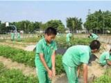 广东省问题孩子学校,问题孩子教育,问题少年学校