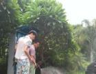 热爱天然 全国连锁-微信支付 自助洗车机加盟