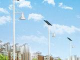 加工供应 太阳能照明灯、庭院灯、各式道路照明灯