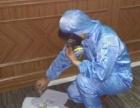 智洁专业室内空气检测与治理,一站式服务专业