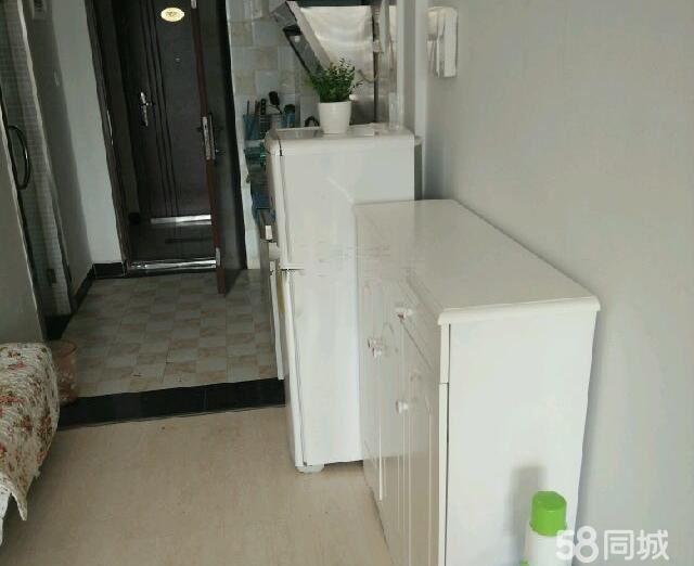 世纪经典单身公寓全新精装修可拎包入住租金年租更优惠!