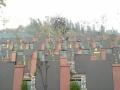 重庆巴南区宝山公墓