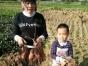 自产番薯 农家乐亲子游周边游 竹筒饭,走地鸡