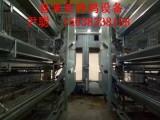 供应湖北H型层叠式鸡笼全自动养鸡设备最好的厂家,河南喜来亚
