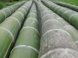 曹妃甸园林绿化木杆枕木批发