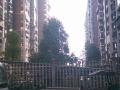 东方明珠大门口房屋出租!可作仓库,办公,商铺。