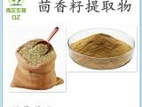 青芷生物 茴香籽提取物 茴香籽黄酮