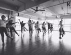 呼和浩特成人培训流行舞蹈 包证书