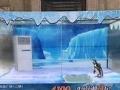 绍兴海洋展览海底世界鲨鱼展览租赁
