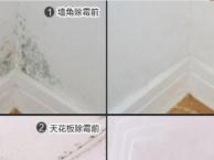 广州全区、墙壁除霉、家具除霉、墙纸除霉、瓷砖除霉等