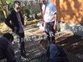 新西兰钢筋工、瓦工、木工出国劳务