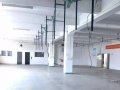 安良 独门独院厂房 4000平 精装修带电梯 出租