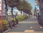 留学日本 N1考前冲刺准备 就来周浦山木培训