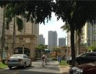天心岛 房东自住型装修,3房2厅干净清爽,绿苑新城 海岸一号