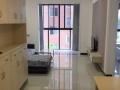 绿地金沙湾 2室1卫2厅 拎包入住,全新装修