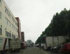 标准厂房2吨货梯6楼大通间集装箱可进随时看房