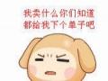 济宁新娘跟妆2017年统一报价480元免费头饰免费