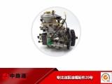 油泵总成NJ-VE4/11E1800L019 配南京泵头