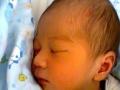 远东家政顾客至上,信誉第一,优秀保姆月嫂育婴师多选
