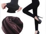 新款冬季打底裤 涤纶无缝一体裤 加厚单层不倒绒保暖打底裤批发
