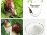 蜗牛蛋白 蜗牛活性肽
