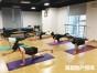 厦门企业团体瑜伽课