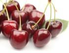樱桃进口进口清关流程价格以及注意的事情欢迎咨询