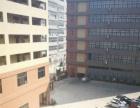 沙井大王山二楼整层900平带米办公室装修厂房招租