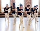 艺考才艺展示民族舞古典舞舞飞扬舞蹈
