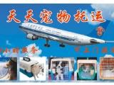 天天寵物托運專業代辦飛機火車檢疫,可提供上門接送服務