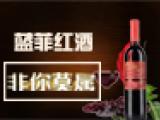 蓝菲红酒加盟