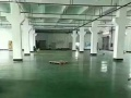 沙井大王山2350平方一楼厂房招租