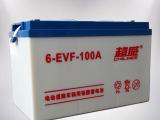 超威电池电动汽车专用电池型号6-EVF-100A