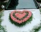 婚车婚庆礼仪专业团队